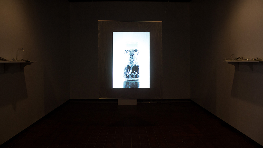 Arts-Christina-Varvis-Habitus-Exhibit-1