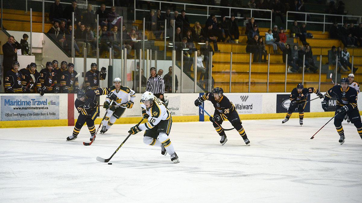 Sports-Ruilin-Fu-Bears-Hockey-Varsity-Sports-Roundup-8