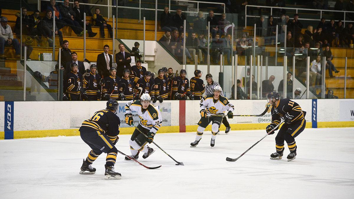 Sports-Ruilin-Fu-Bears-Hockey-Varsity-Sports-Roundup-9