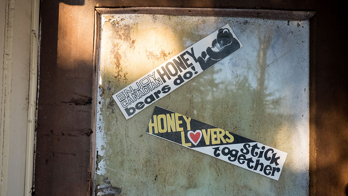 Feature-Kevin-Schenk-The-Bees-Knees-27
