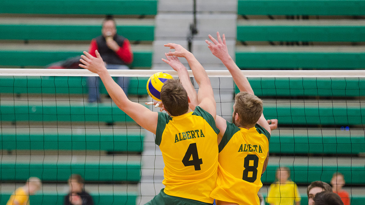 Sports-Mitch-Sorensen-Bears-Volleyball-4