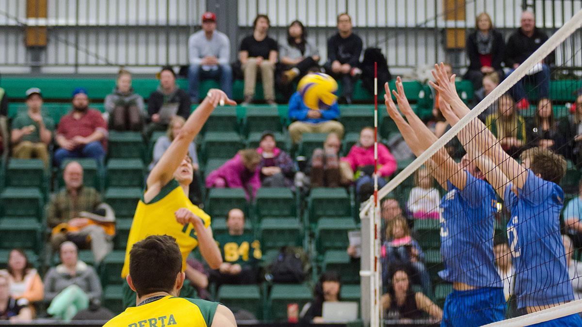 Sports-Mitch-Sorensen-Bears-Volleyball-7