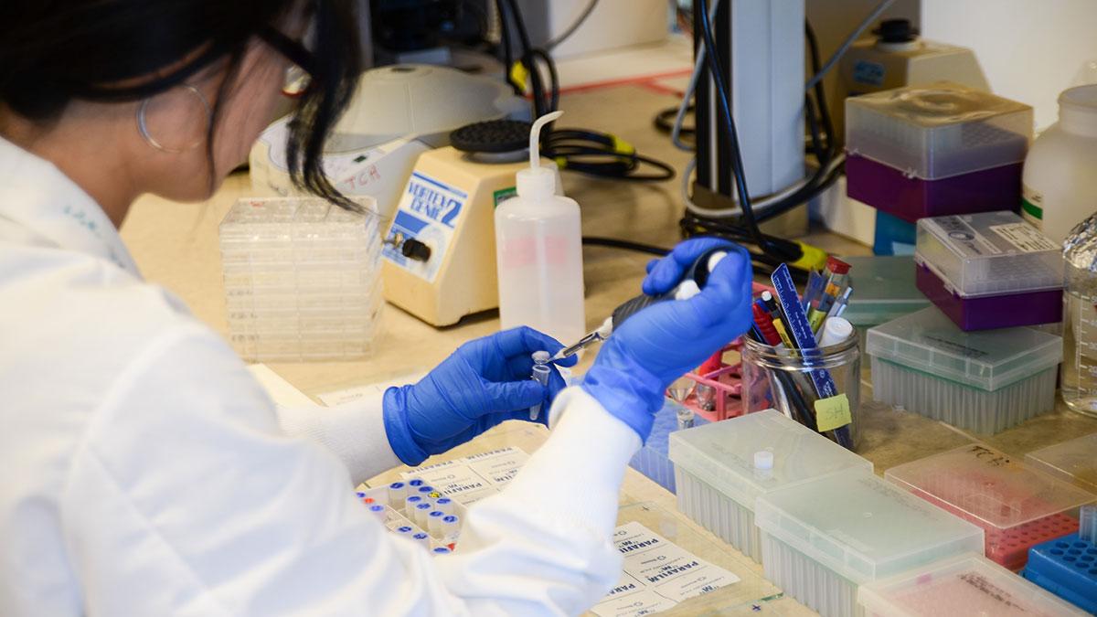 News-Oumar-Salifou-Zika-Virus-Lab-1