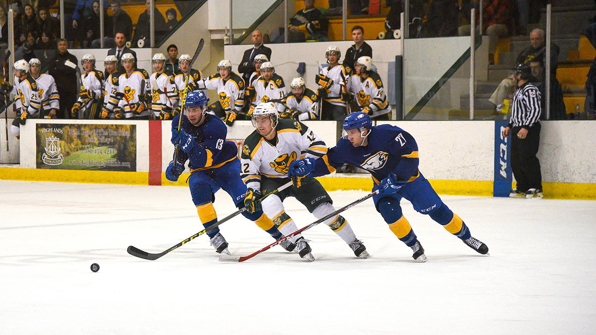 Sports-File-Photo-Ruilin-Fu-Bears-Hockey-Finals-Preview-