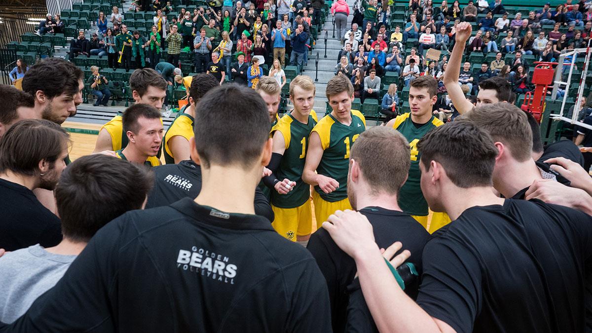 Sports-Richard-Liew-Bears-Volleyball-11