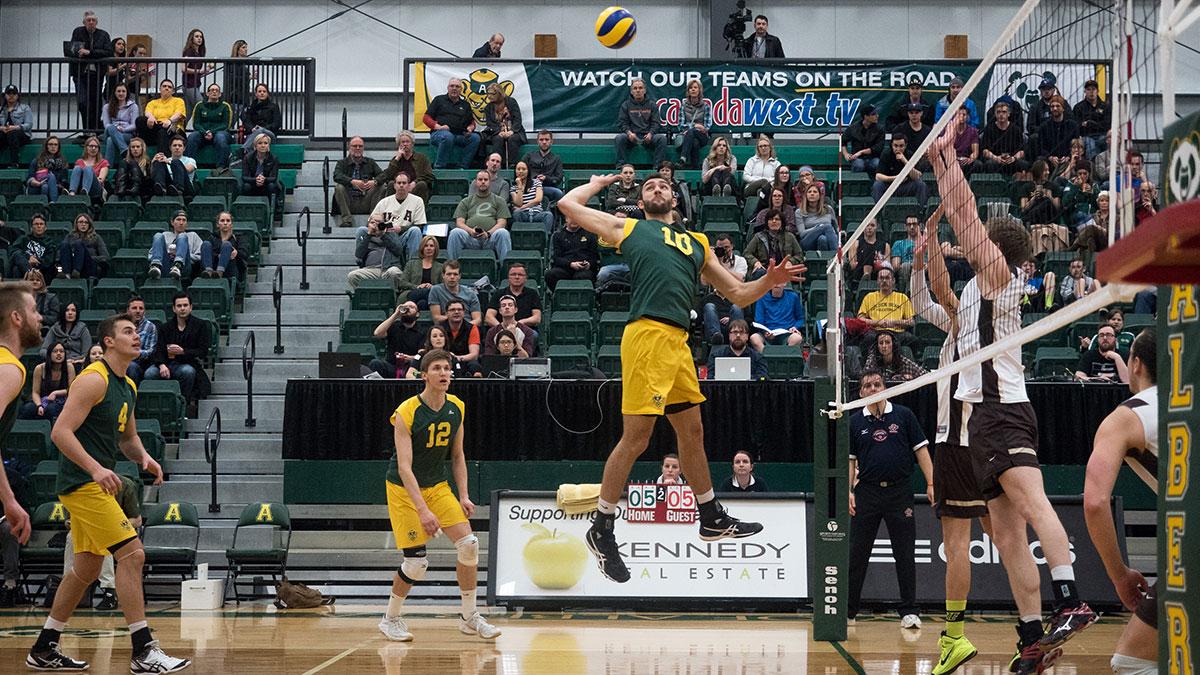 Sports-Richard-Liew-Bears-Volleyball-5
