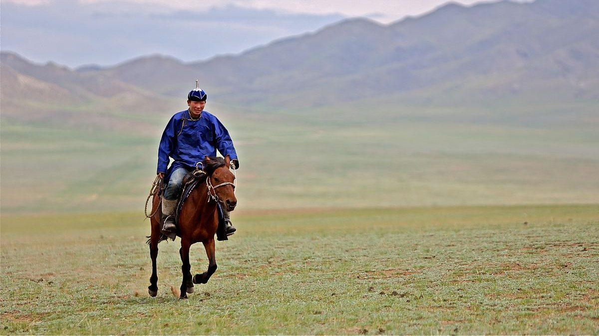 mongolia_horse