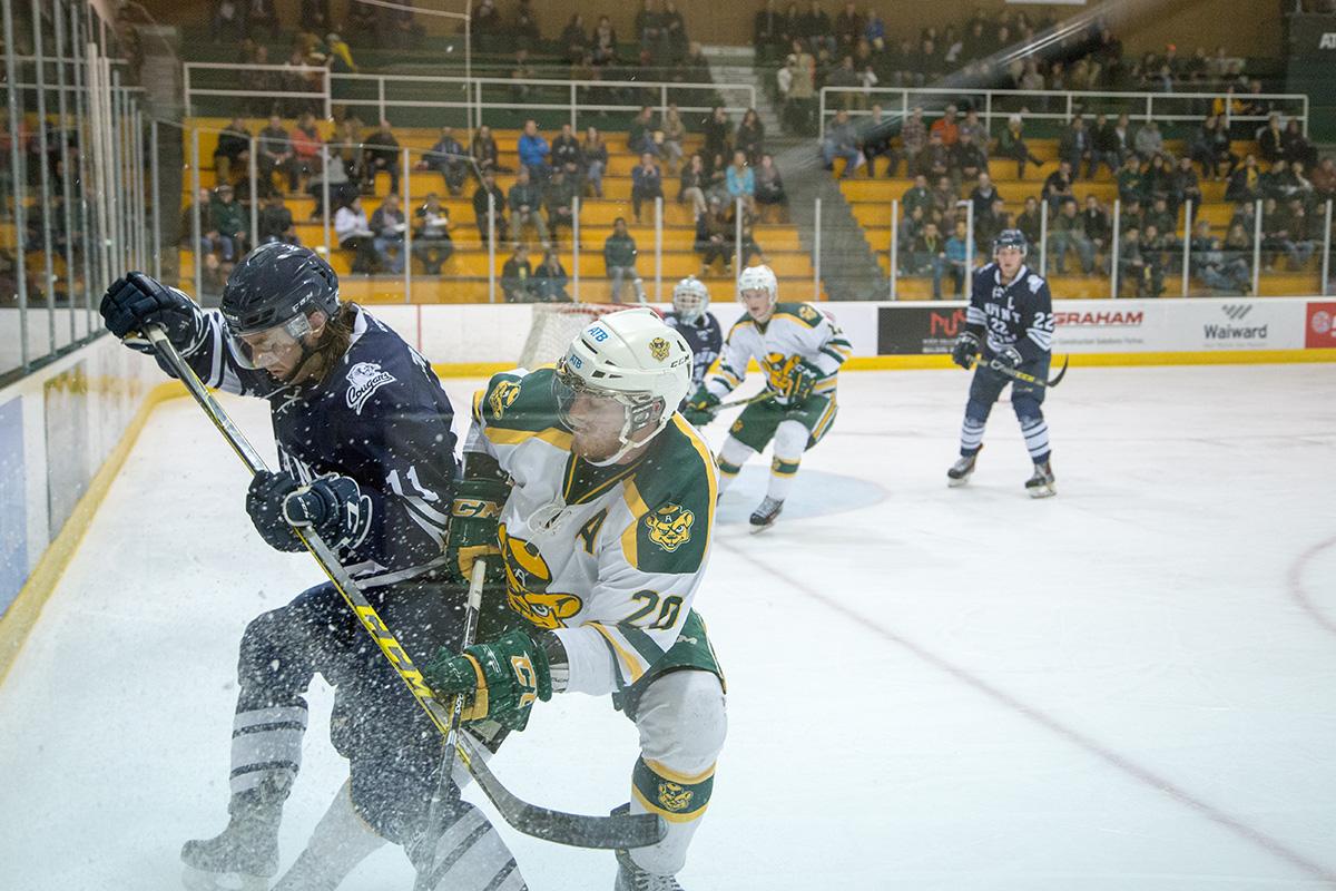 1050-Joshua-Storie-Golden-Bears-Hockey-7